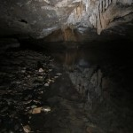 Reflections #1 Sassafras Cave